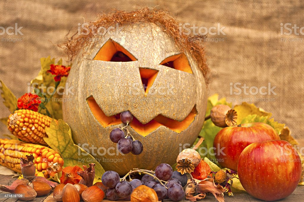Autumn still-life with funny pumpkin royalty-free stock photo