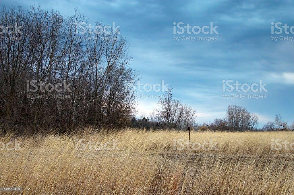 Autumn Storm stock photo