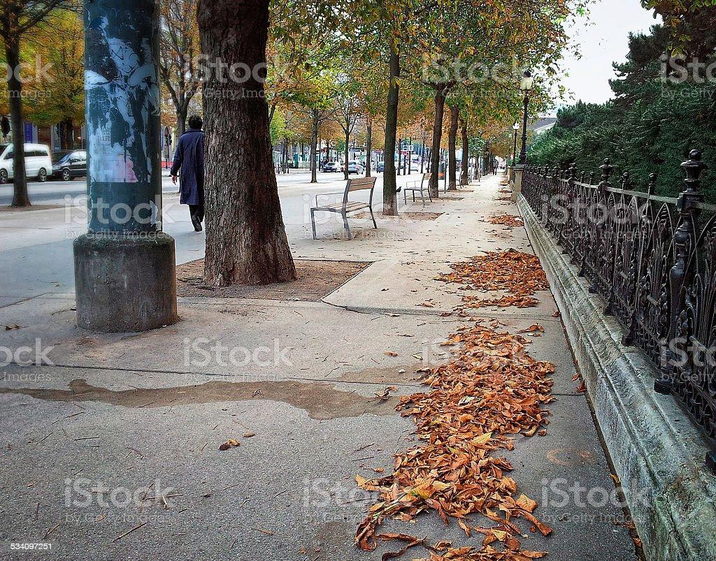 Autumn street in Vienna stock photo