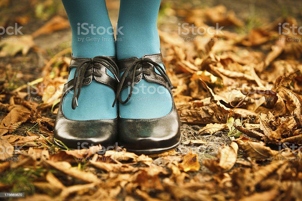 Herbst-Stil Lizenzfreies stock-foto