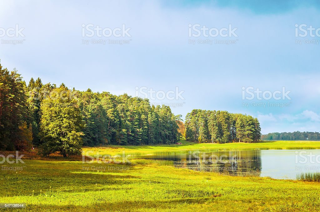 Autumn sunny landscape of Soroti river and autumn yellowed forest stock photo