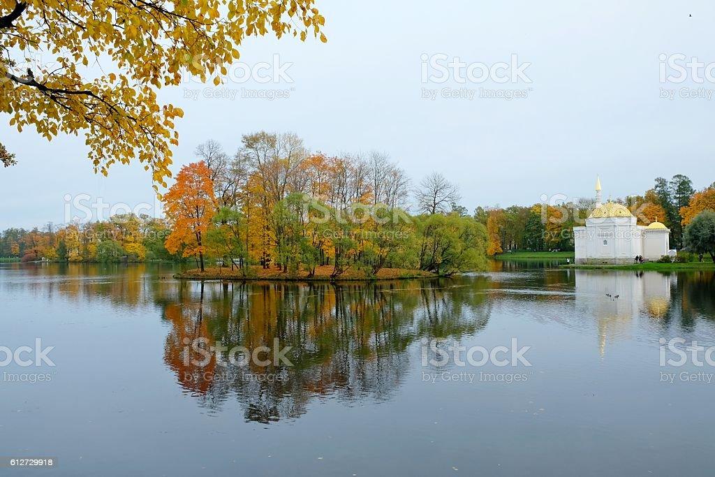 Autumn sunny landscape with forest nature, colorful autumn landscape. stock photo