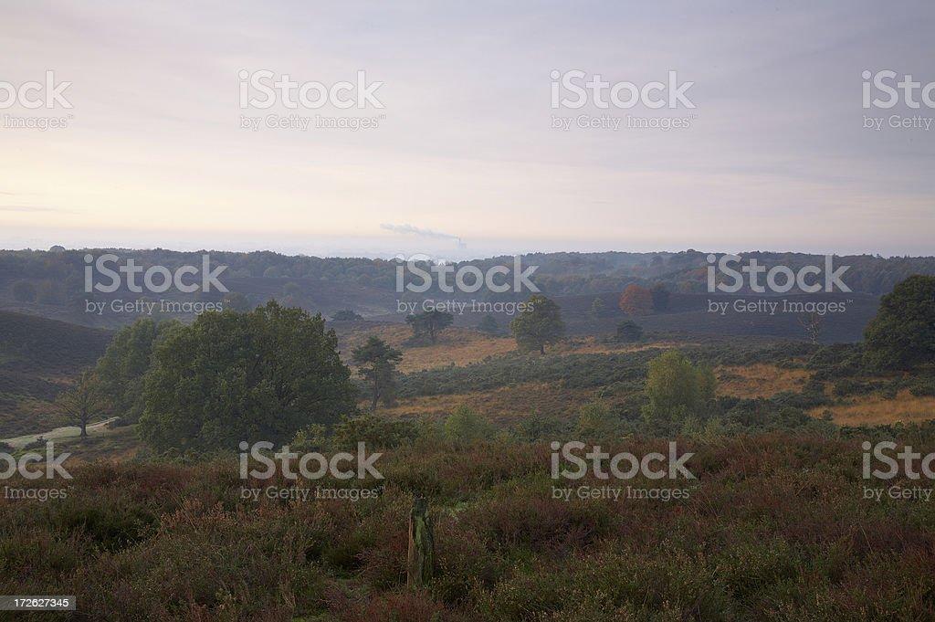 Autumn sunrise on heath, heather royalty-free stock photo