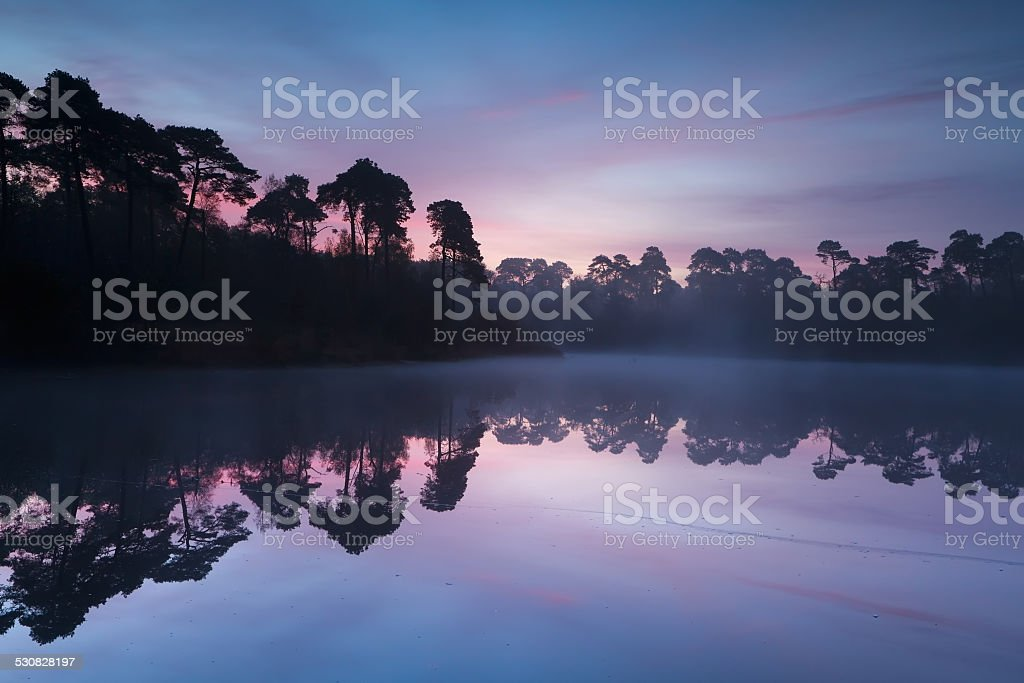 autumn sunrise over wold lake in forest stock photo
