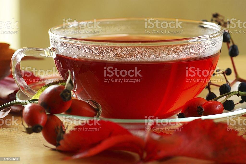 Autumn tea royalty-free stock photo