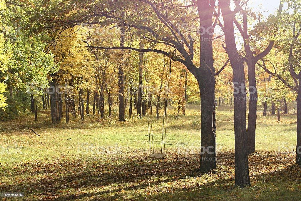 Autumn teeterboard royalty-free stock photo