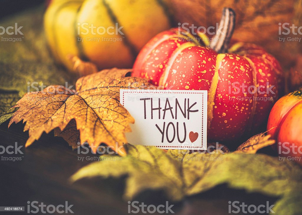 Autumn Thanksgiving arrangement with thank you message stock photo