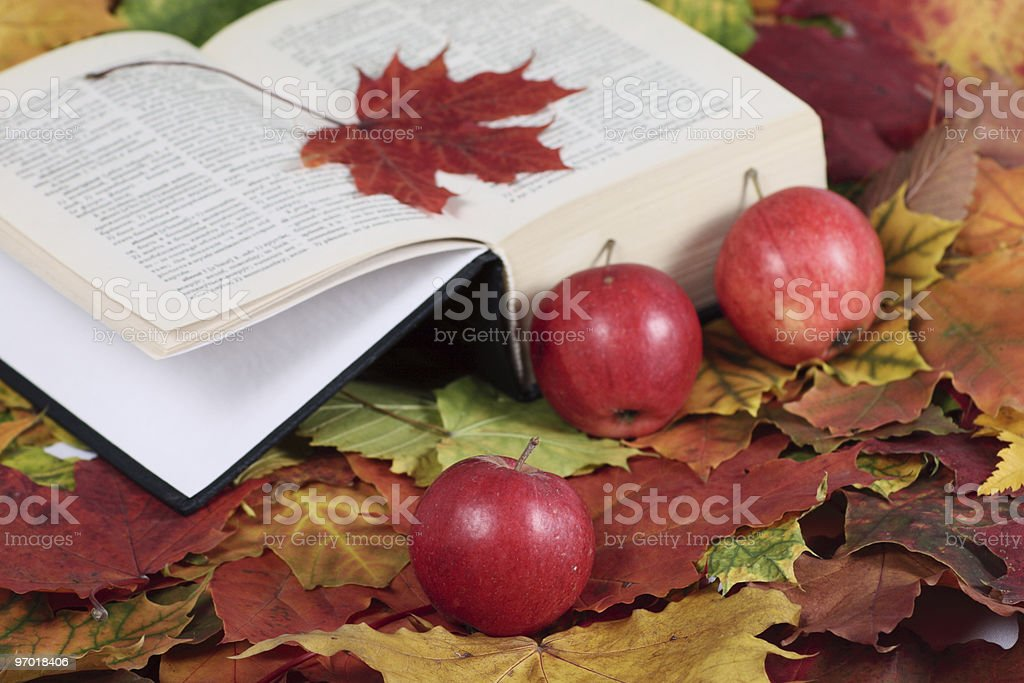 Autumn, the book and red apples stock photo