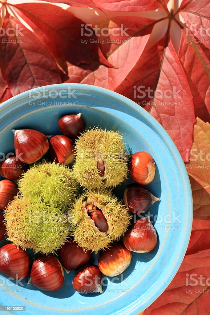 autumn theme with chestnuts in a bowl stock photo
