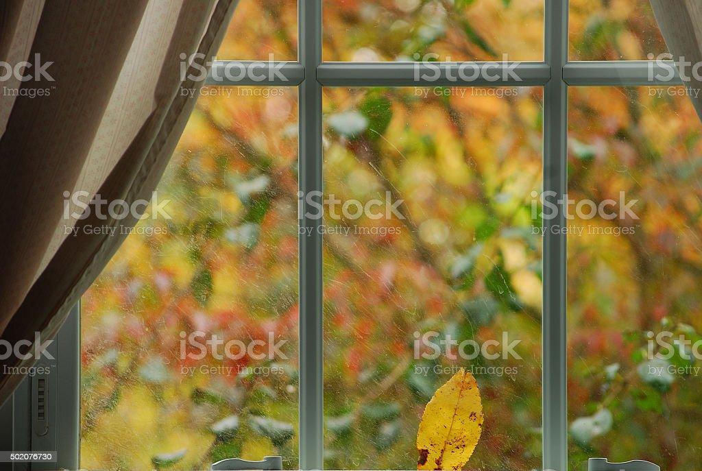 Autumn Through a Window stock photo