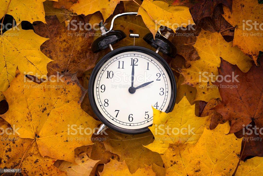 autumn time stock photo