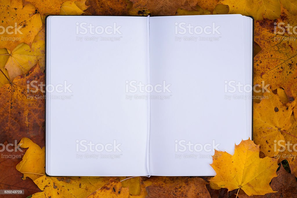 autumn time stock photo