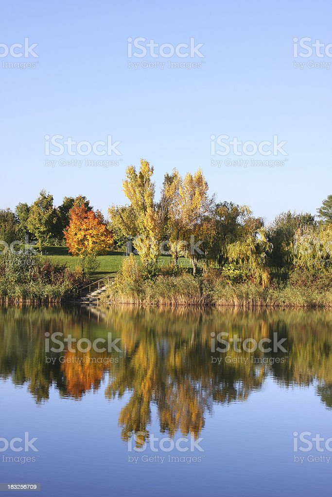 autumn time with the lake stock photo