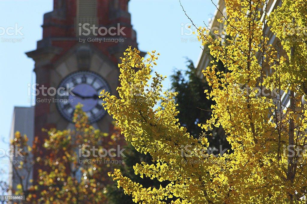 Autumn town stock photo