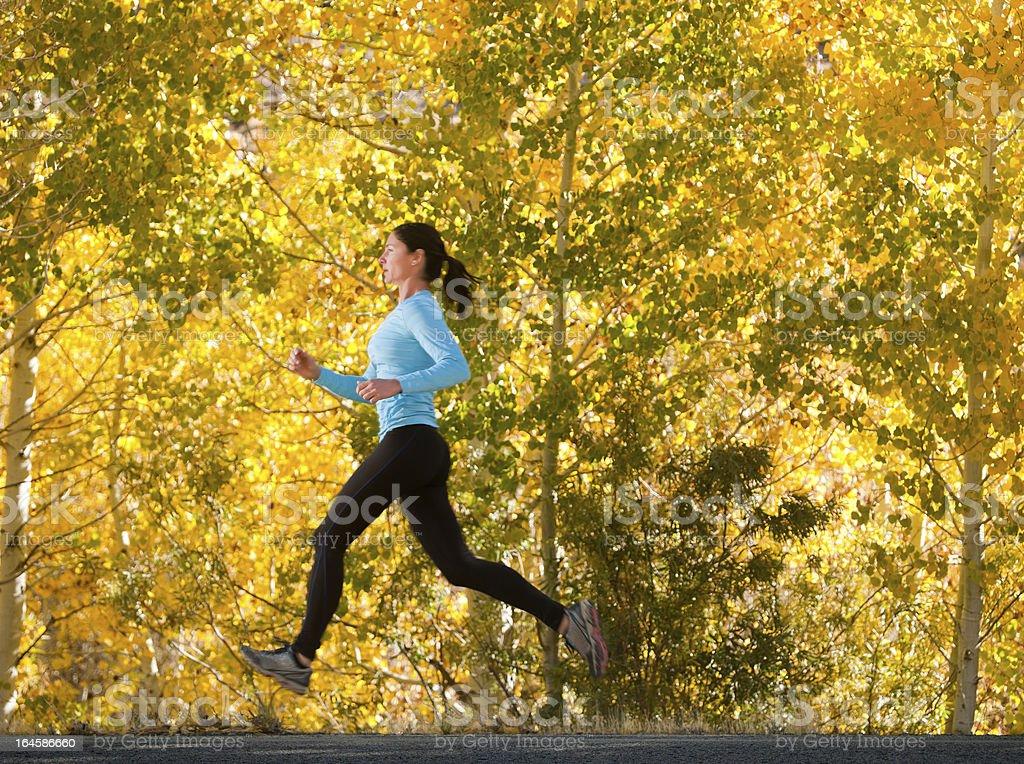 Autumn Trail Runner royalty-free stock photo