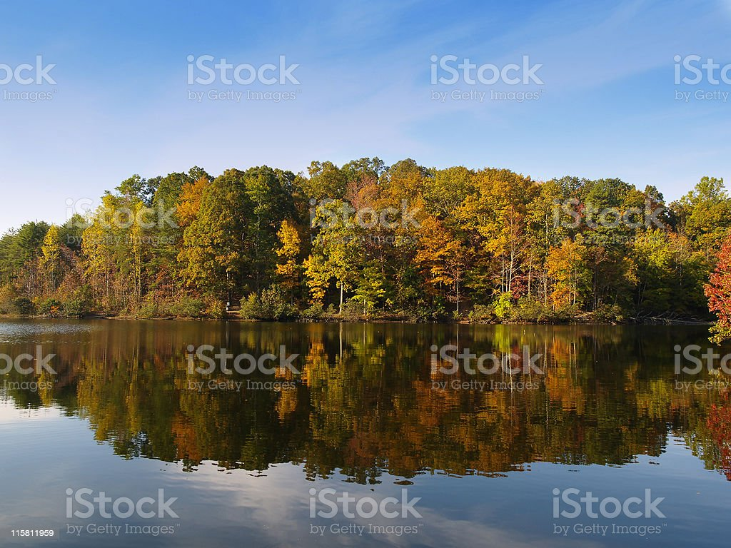 Autumn tree line reflecting in tranquil lake in Carolina royalty-free stock photo
