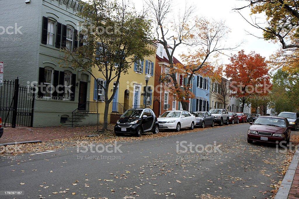 Autumn trees on a street in Washington royalty-free stock photo