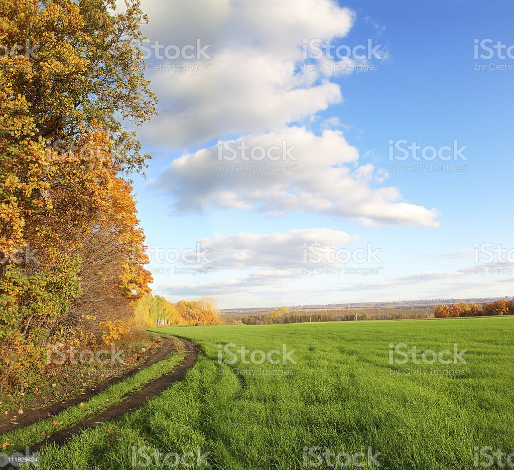 Autumn trees on the side of green grass landscape royalty-free stock photo