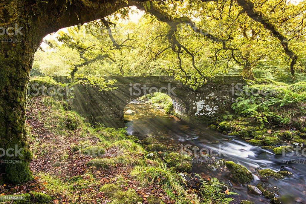 Autumn trees over Roman stone bringe stock photo
