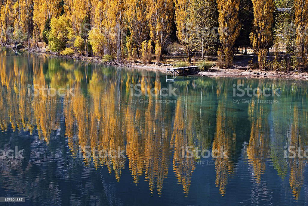 Autumn trees reflected in the river royalty-free stock photo