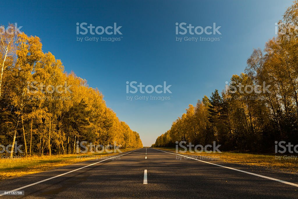 Autumn trip stock photo