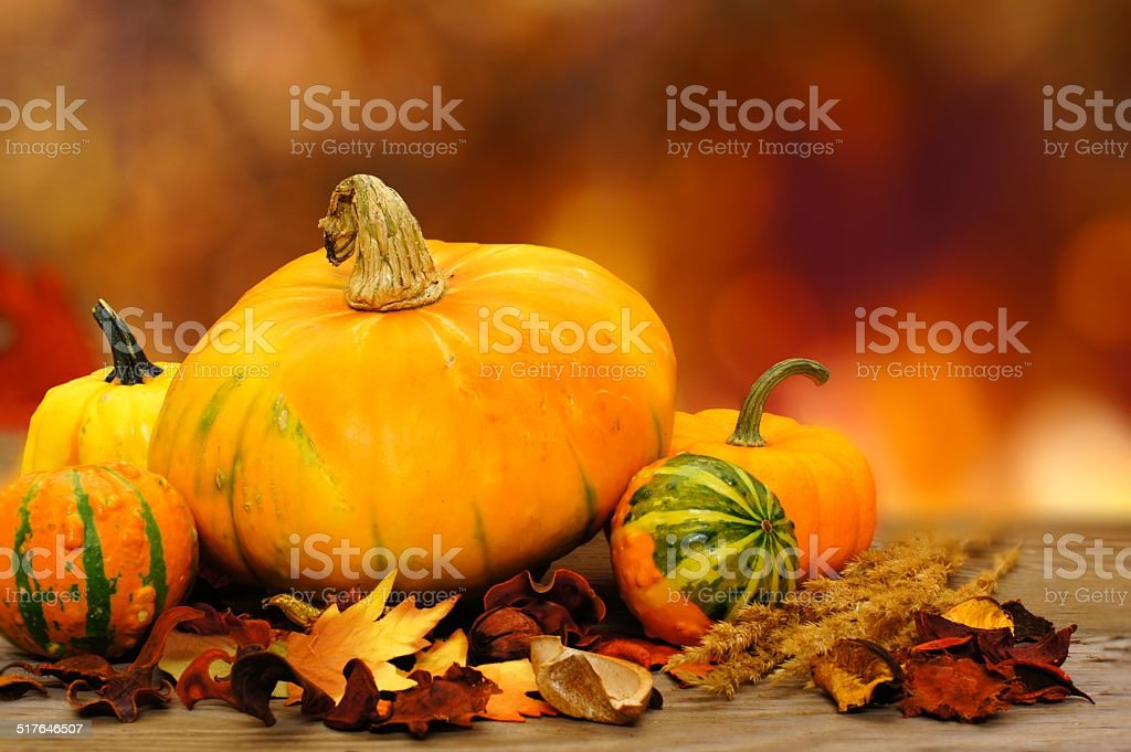 Autumn vegetables stock photo