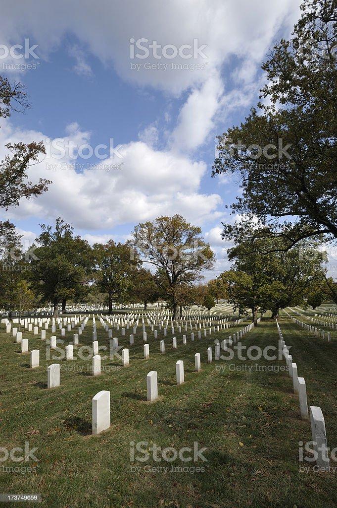 Autumn Vertical Arlington National Cemetery royalty-free stock photo