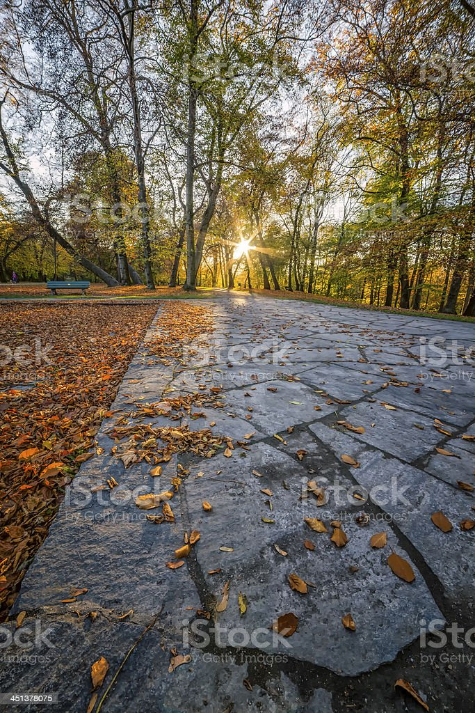 Autumn View in a Park stock photo