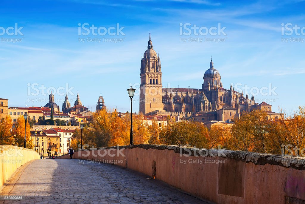 Autumn view of Salamanca with bridge and Cathedral stock photo