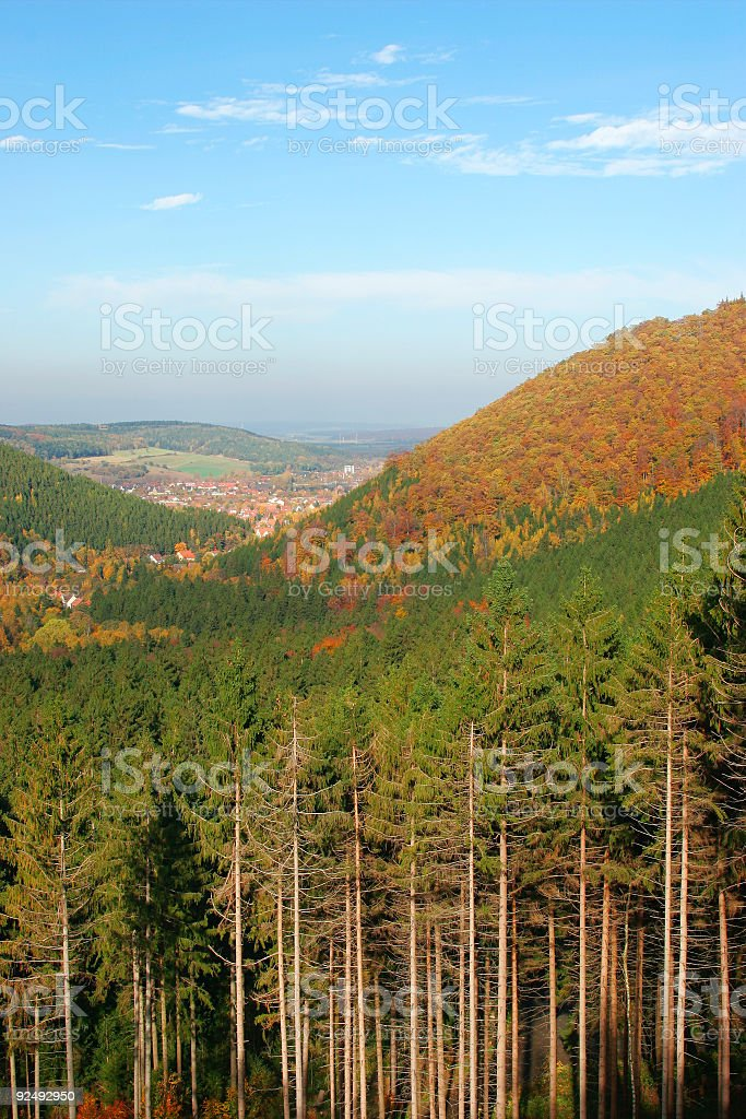 Autumn View royalty-free stock photo