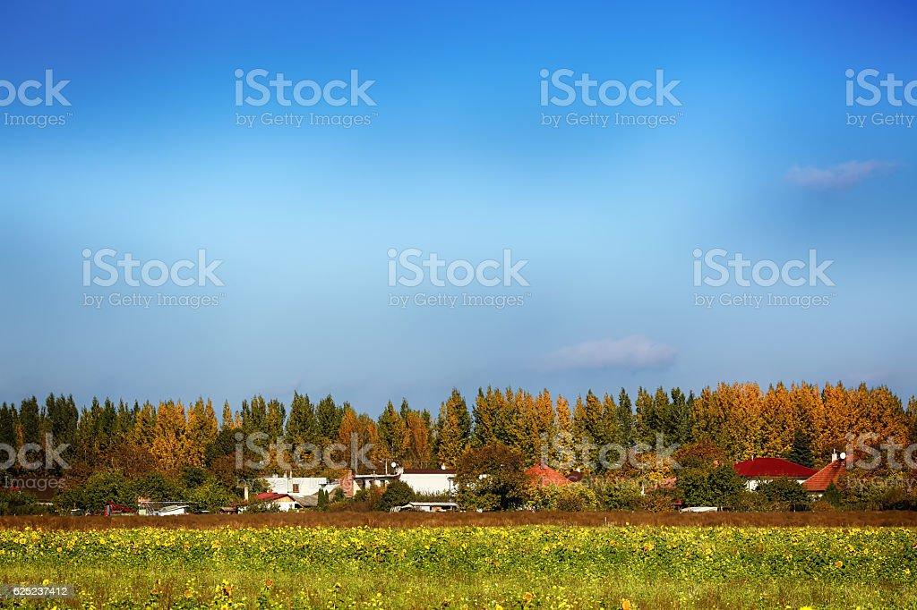 Autumn village landscape stock photo