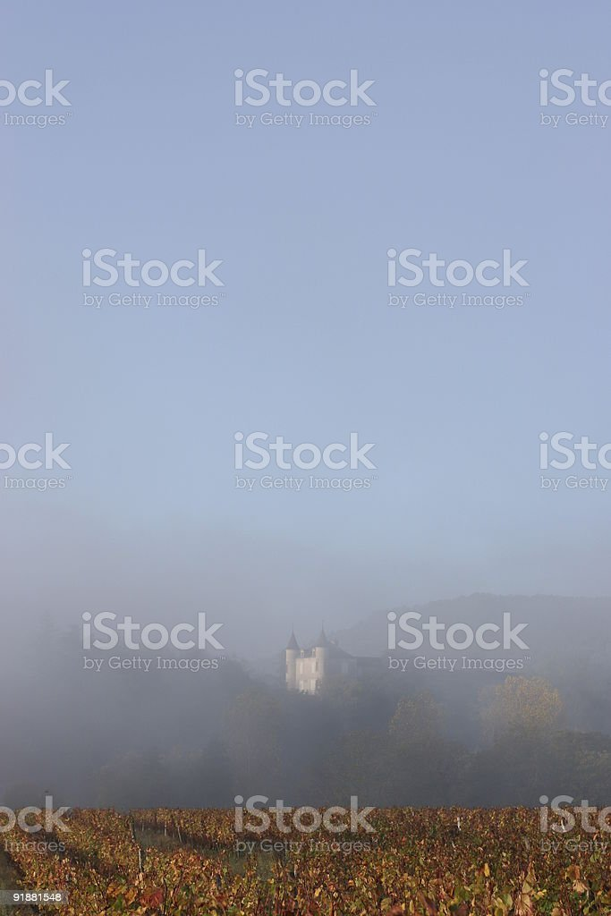 Autumn vines, France, with Chateau in mist stock photo