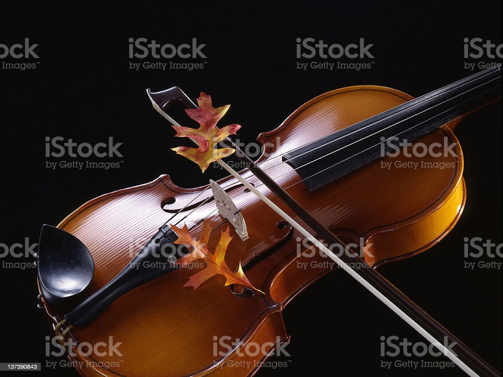 Autumn Violin stock photo