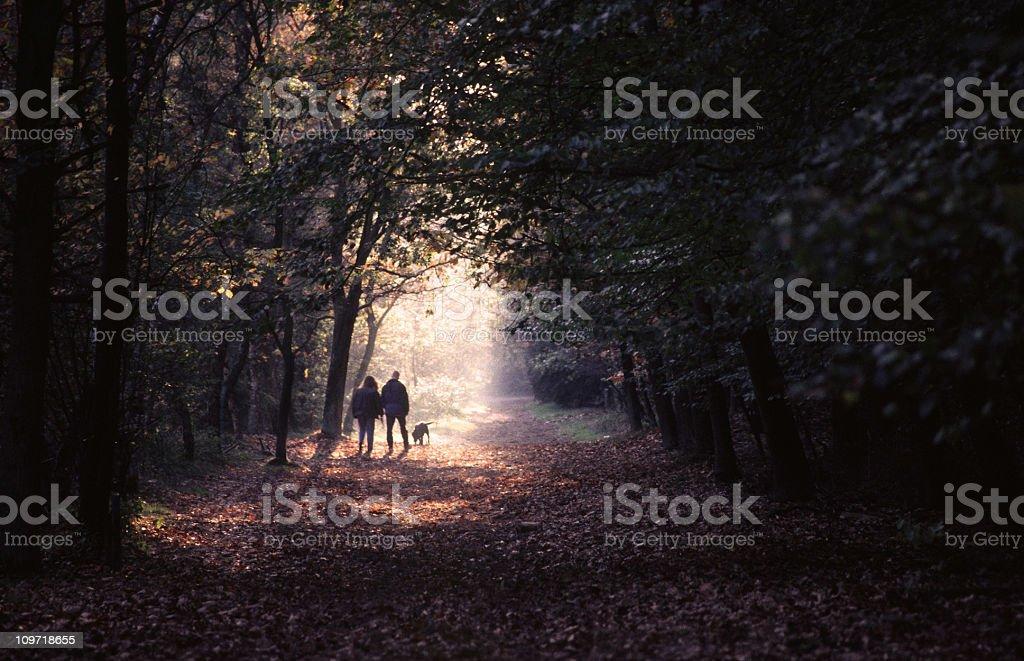 Autumn walk royalty-free stock photo