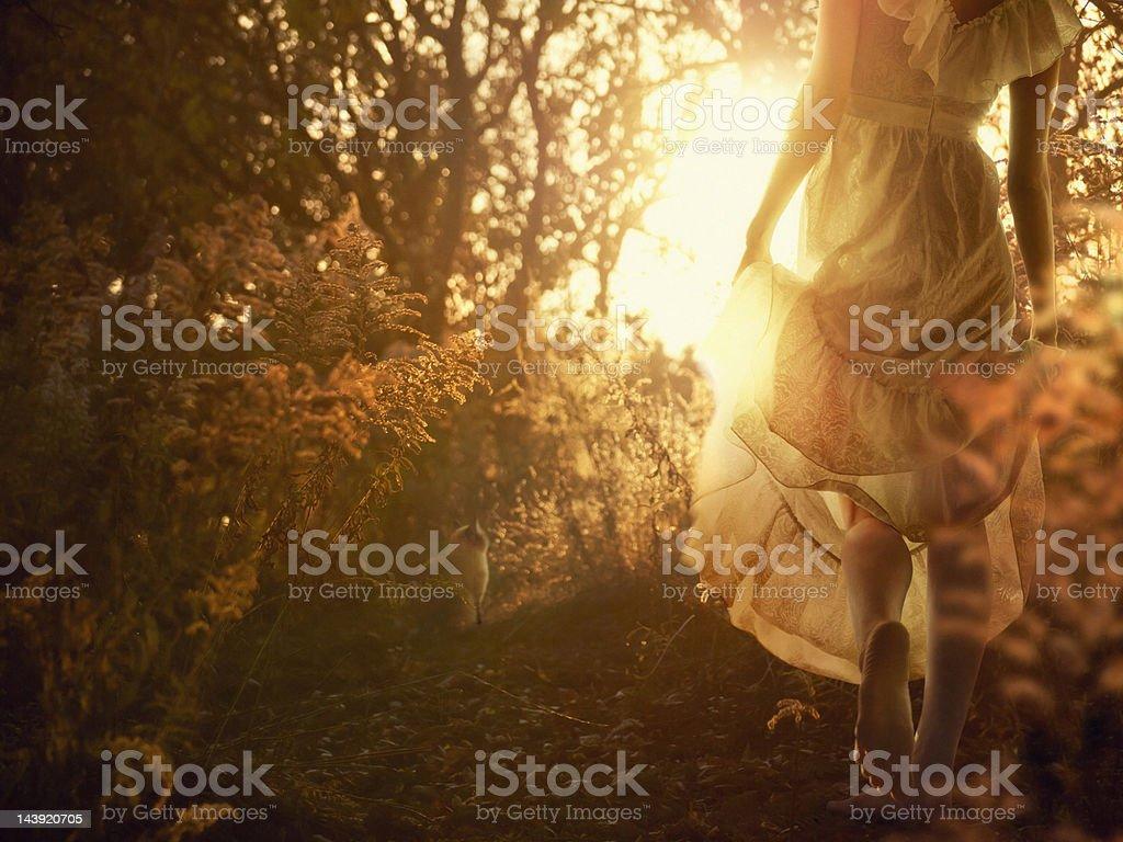 autumn walk stock photo