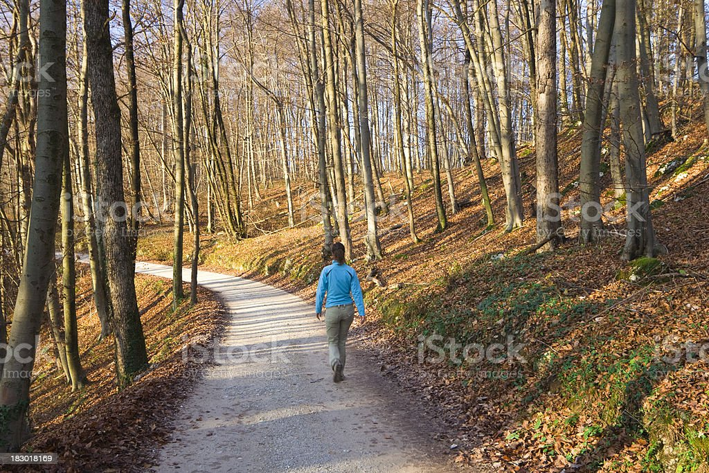 autumn walk royalty-free stock photo
