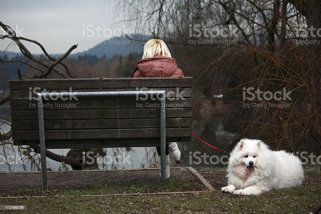 Autumn walk with a dog royalty-free stock photo