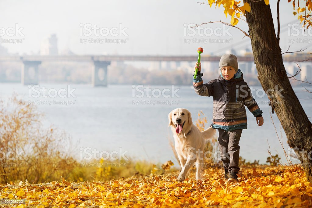 autumn walk with pet stock photo