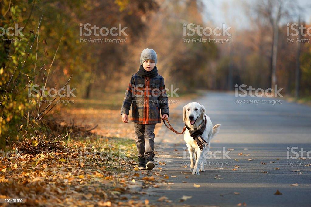 autumn walk with pet stock photo