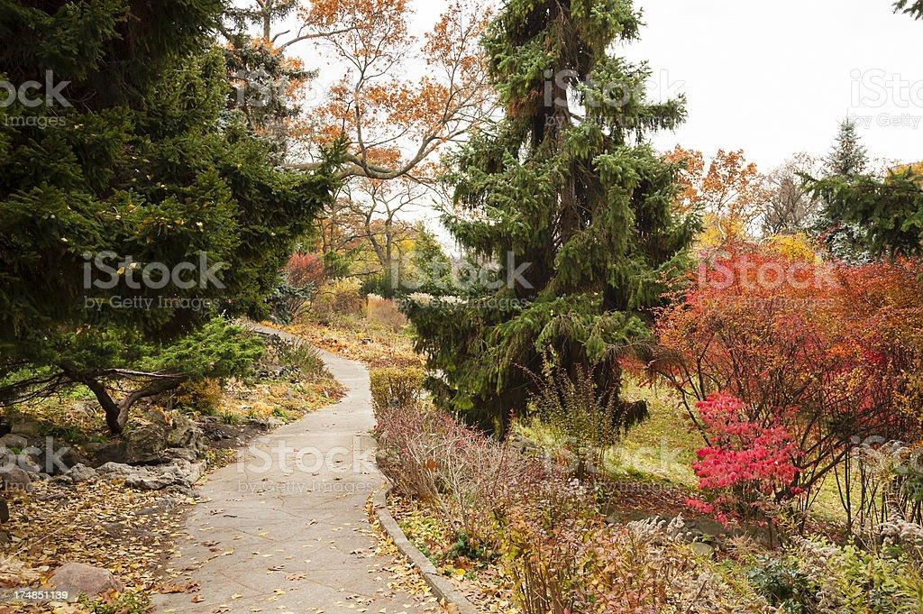 Autumn Walkway High Park royalty-free stock photo