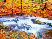 Autumn waterfall in New York