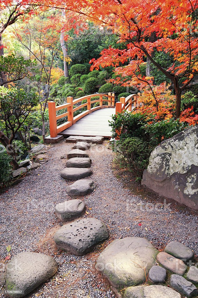 Autumn ways stock photo