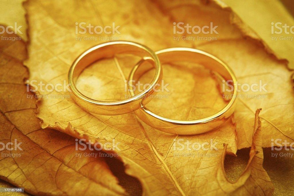 Autumn Wedding royalty-free stock photo