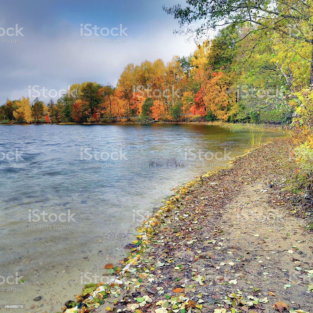 Autumn wind 1 stock photo