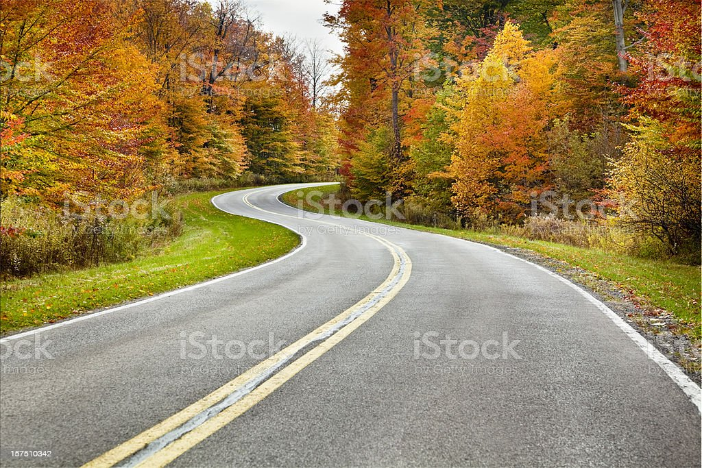 Autumn Winding Road Flanked by Brilliant Foliage stock photo