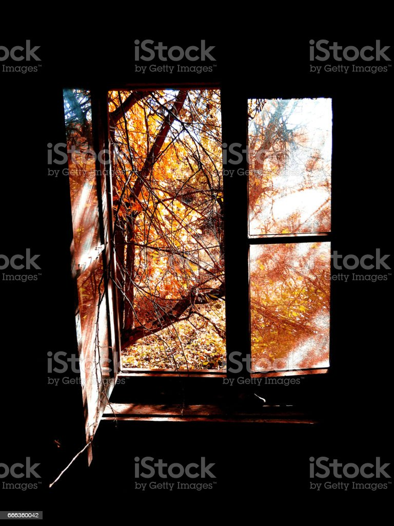 Autumn window stock photo