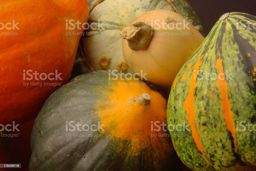 Autumn Winter Squash Variety, Butternut, Acorn, Turban Close-up royalty-free stock photo