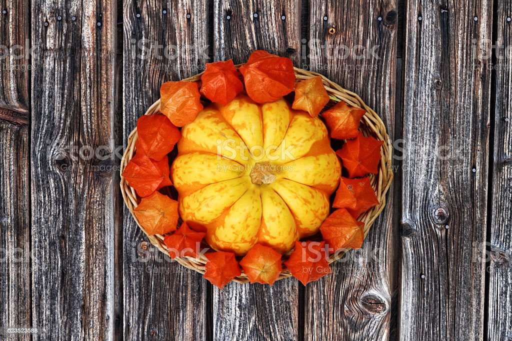Autumnal Basket with  Decorative Gourd and Physalis on Wooden Background – Foto