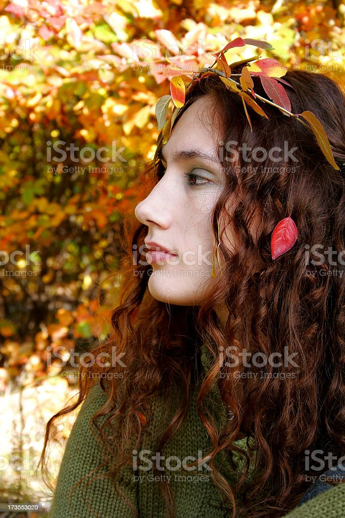 Autumnal beauty royalty-free stock photo