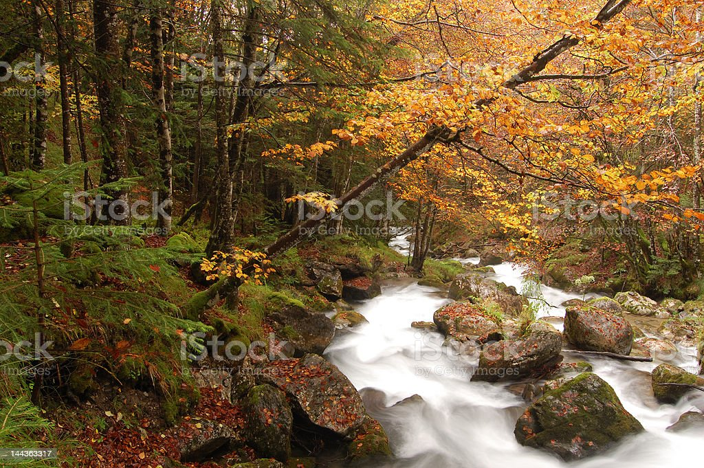 Autumnal colors in the french pyrenees royalty-free stock photo